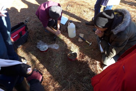 In this photo, the class is conducting a soil lab, in which they are doing a series of tests to measure quality of soil in a parking lot near a hill, and one in a bog.