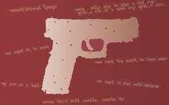New Missouri Gun Law irrational, dangerous