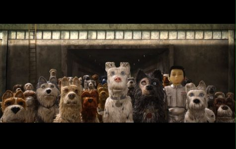 Director behind Fantastic Mr. Fox returns with Isle of Dogs, another riveting film celebrating animal courage and companionship