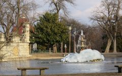 Tower Grove Park features open natural spaces, wide array of interesting subjects