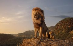 Upcoming The Lion King remake exposes the artistic value of animation