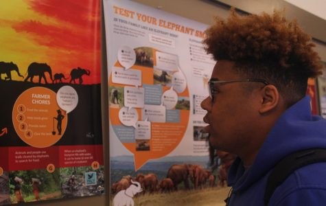 Students involved in exhibit and presentation for The Paly Foundation