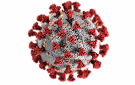 This illustration, created at the Centers for Disease Control and Prevention (CDC), reveals ultrastructural morphology exhibited by coronaviruses. Note the spikes that adorn the outer surface of the virus, which impart the look of a corona surrounding the virion, when viewed electron microscopically. A novel coronavirus, named Severe Acute Respiratory Syndrome coronavirus 2 (SARS-CoV-2), was identified as the cause of an outbreak of respiratory illness first detected in Wuhan, China in 2019. The illness caused by this virus has been named coronavirus disease 2019 (COVID-19).